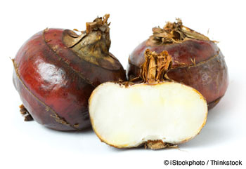 water-chestnuts-nutrition-facts