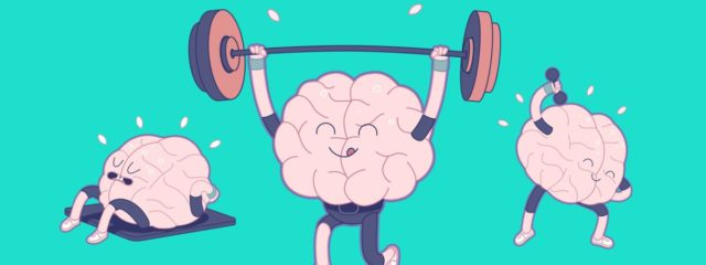 After sports, the brain functions more efficiently